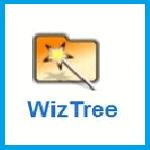 Анализ содержимого жесткого диска - программа WizTree