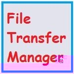 Программа File TransferManager